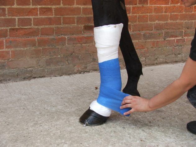 Applying support bandage