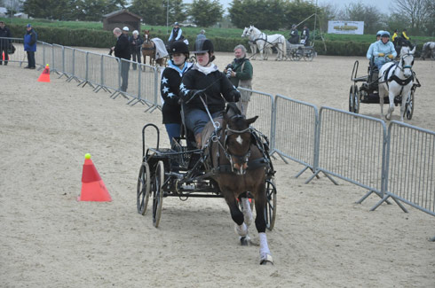 Emily Ham at the Indoor Carriage Driving Championships 2014