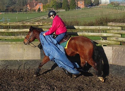 Jason Webb desensitising a horse to tarpaulines