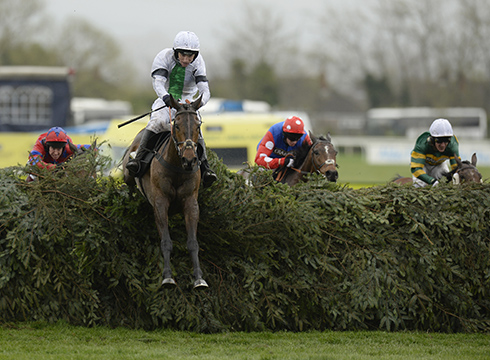 grand national runners and tips