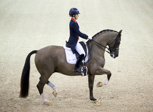Fei Launches Search For Equestrian Heroes Horse Amp Hound