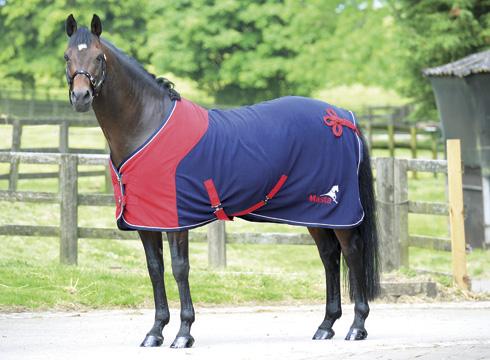 New Masta Show Rug Horse Hound