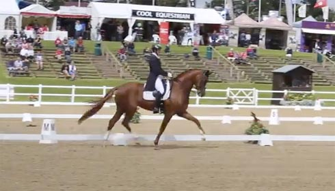 Woodlander Farouche competing at Hartpury
