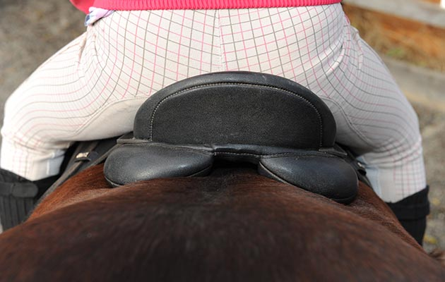 Saddle viewed from behind