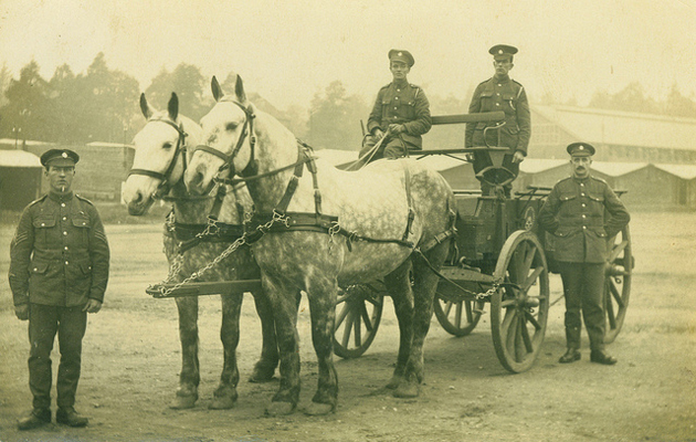 Book Gives Account Of Horses In Ww1 Horse Amp Hound
