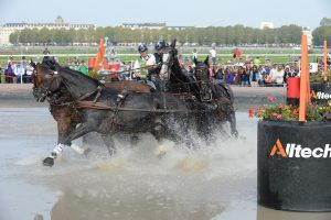 Driving at the World Equestrian Games