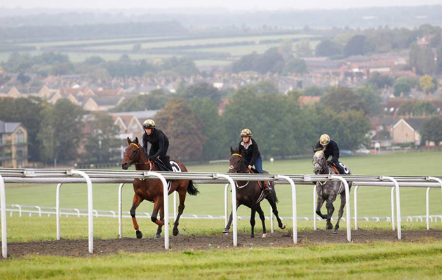 Travel opportunity for racing graduates