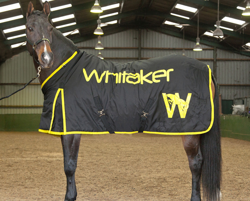The John Whitaker Winter Rug Guide