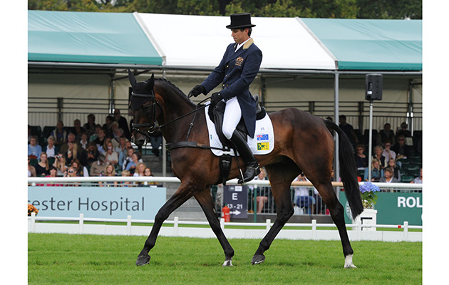 Burghley 2014 1st Trot