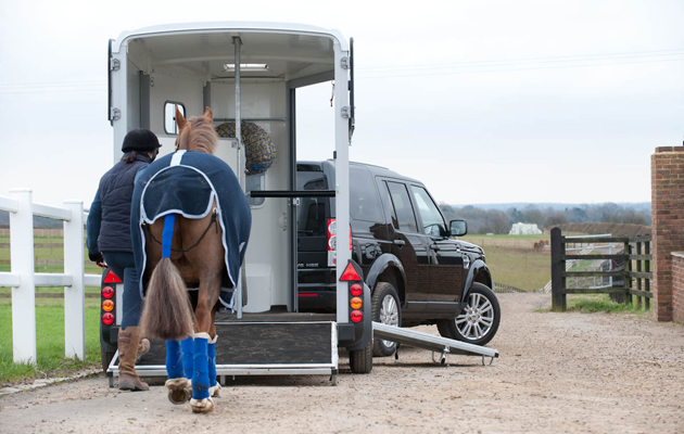 loading horse into horse box horsebox