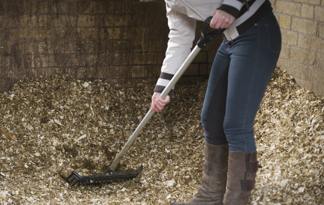 mucking out shavings