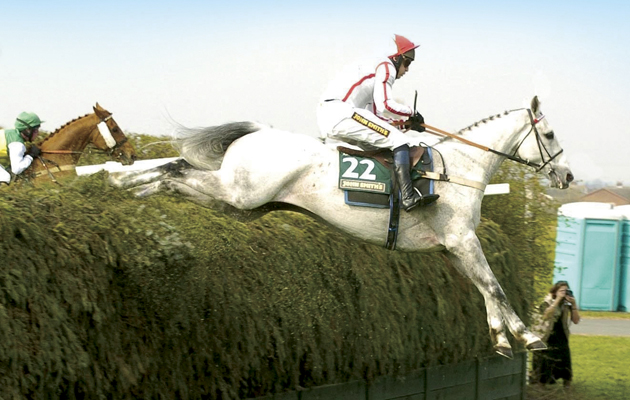 Check out these racing heroes who have taken up team chasing - Horse & Hound