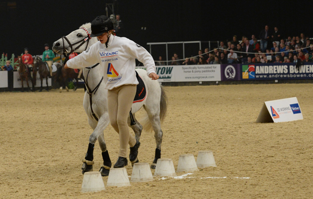 Warwickshire winners of the Pony Club Mounted Games - Prince Philip Cup at the Horse of the Year Show at the N. E. C.  Birmingham, UK between 8th -12th October 2014 HOYS 12 10 2014MOUNTED GAMES