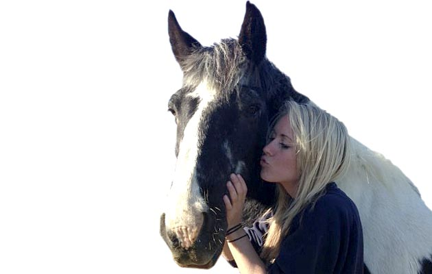 Are horses affected by your tone of voice?