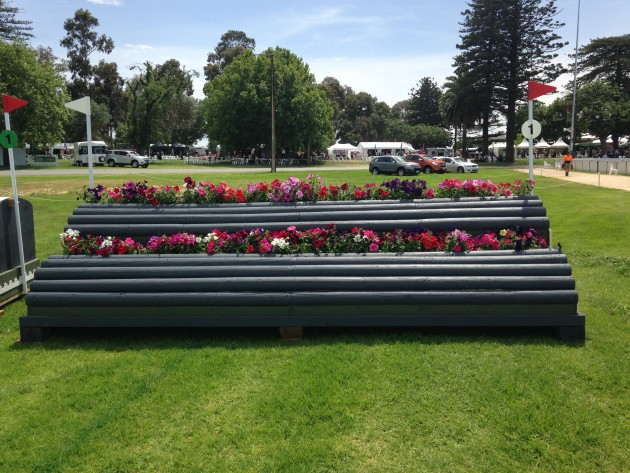 cross country adelaide horse trails 2014: Fence 1