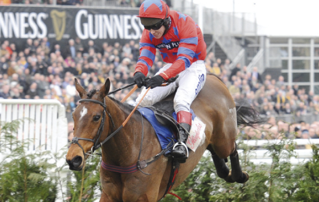 racing form profiles horse cross match