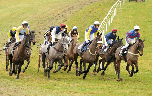 Barbury international point-to-point