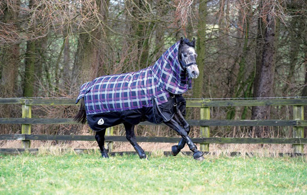 Masta Launches New Heavyweight Rug Horse Hound