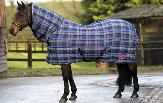10 Heavyweight Le Rugs Your Horse Will Thank You For
