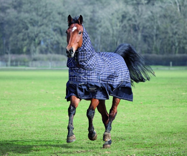 8 Of The Best Heavyweight Turnout Rugs Horse Hound