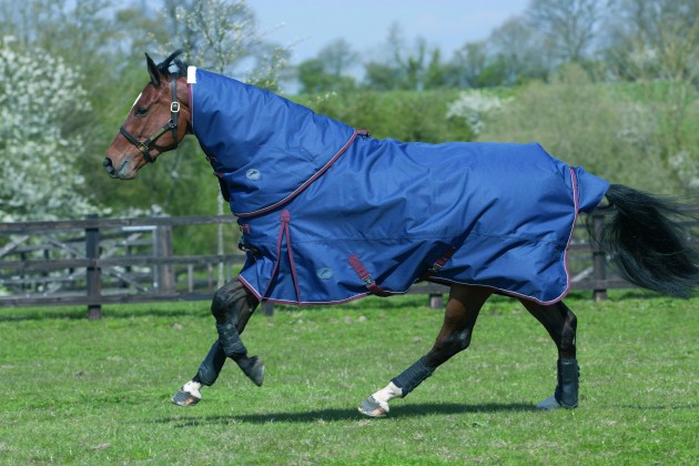 8 Of The Best Heavyweight Turnout Rugs