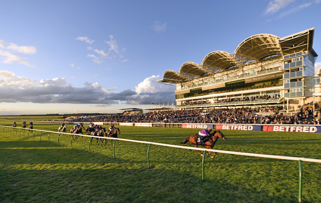 2,000 guineas bets