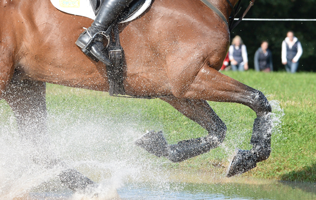 FEI 2018 eventing rule proposals