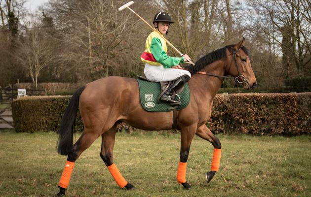 racing and polo