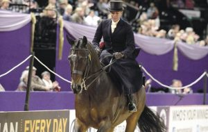 HOYS 10 09 2013 - SCIENCE SUPPLEMENTS LADIES' HUNTER OF THE YEAR