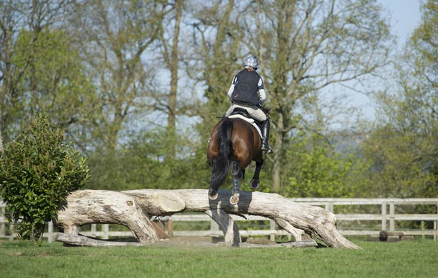Where to go cross-country schooling this winter