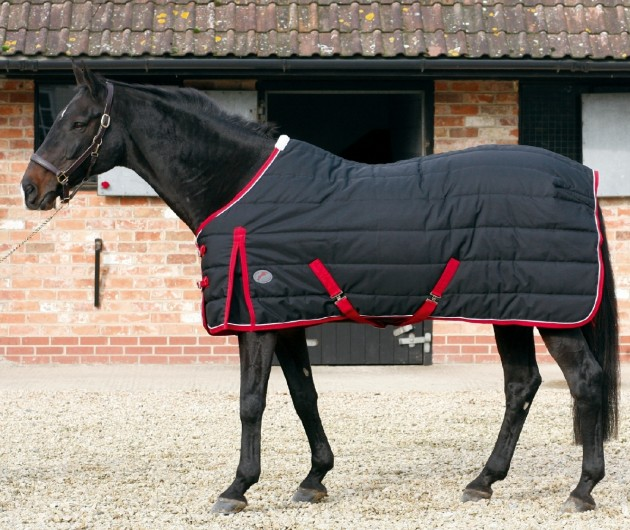 Medium Weight Stable Rugs Your Horse Will Thank You For