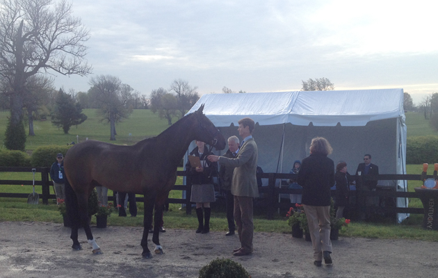 William Fox-Pitt and Bay My Hero at the final horse inspection at Rolex Kentucky 2015