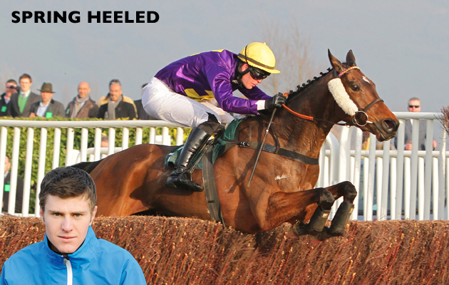 Spring Heeled and Robbie McNamara Win the Fulke Walwyn Kim Muir Challenge Cup Handicap Chase Cheltenham 13-03-2014 Pic LouisePollard / Racingfotos.com THIS IMAGE IS SOURCED FROM AND MUST BE BYLINED
