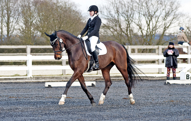 Norton Heath Will No Longer Host British Dressage Competitions