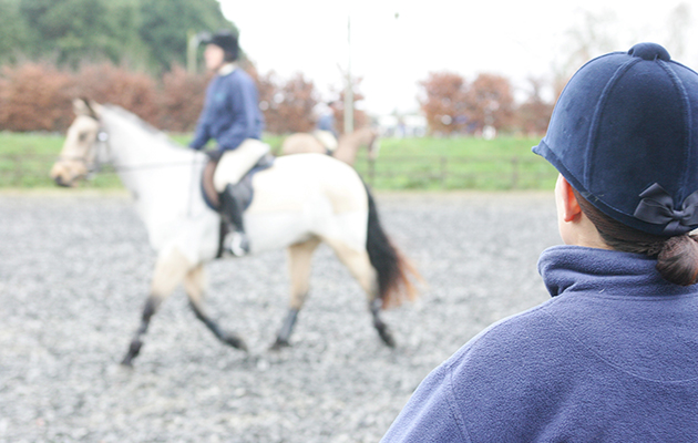 ridingschool, riding lessons , jumping lesson, horse riding lesson in safe arena, instructor looking on as rider moves around arena, riders wearing body protectors