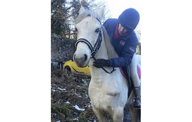 mare dies from slash