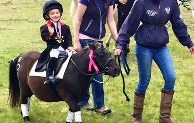 Are These The Most Incredible Horsey Fancy Dress Costumes