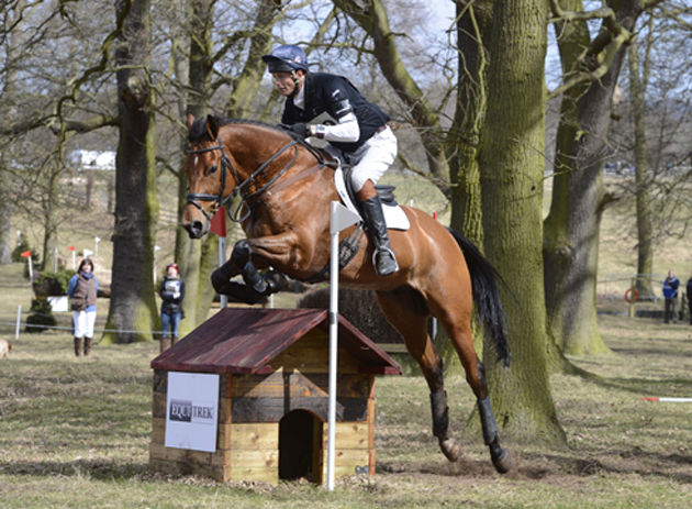 british eventing working group