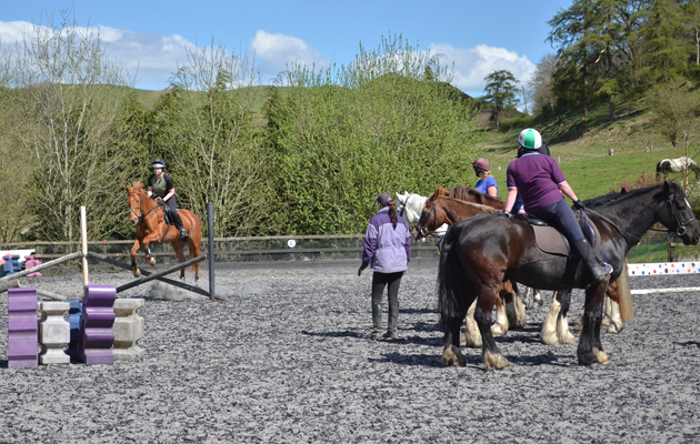 horse riding lessons at riding schools