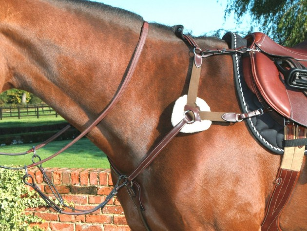 Don T Move 12 Of The Best Breastplates Horse Hound