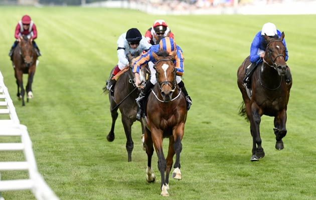 Gleneagles at Royal Ascot