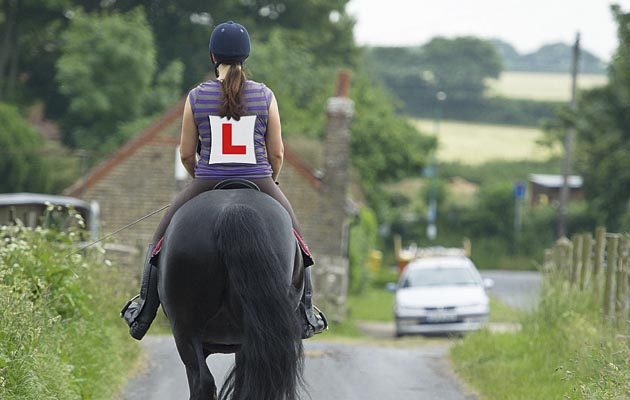 driving test for riders