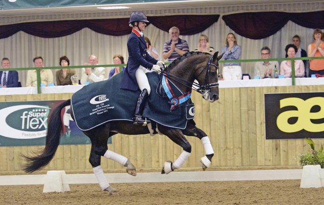 Charlotte dujardin happy 32nd birthday in pictures for Dujardin richard