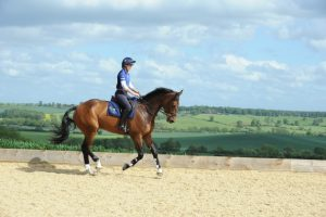 Piggy with OBOS COOLEY (I think, please check) at Piggy French's yard at Maidwell Lodge Farm, Maidwell, Northamptonshire, UK on 2nd June 2015