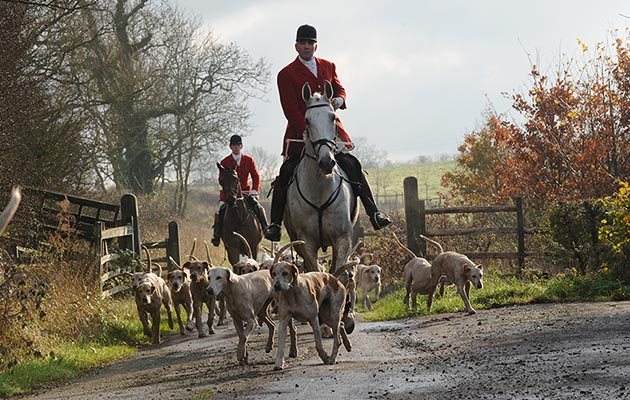 Andrew Osborne Huntsman and Master of Cottesmore and Robert Medcalf (Whipper-in), with the hounds during the meet at Owston, near Oakham in Rutland, UK on 18 November 2014
