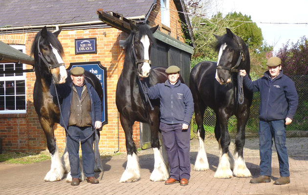 18hh Shire joins brewery team