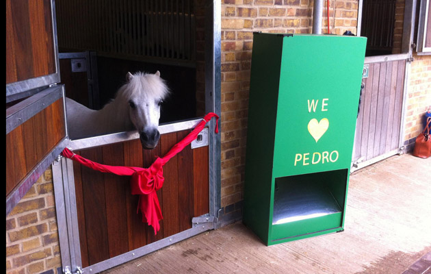 TAGS Ben MaherCharityShetland ponies & New stable door for Pedro the pony with a periscope - Horse \u0026 Hound
