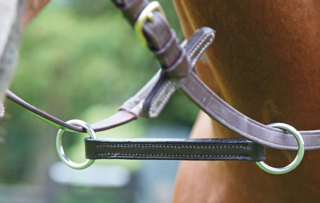 Martingales can improve ridden welfare, suggests study