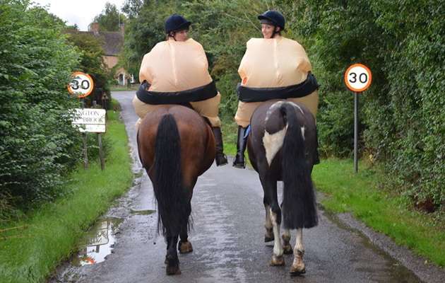 slow down for my horse campaign