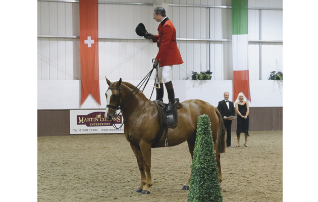 Simon Charlesworth and FAIT ACOBBLI - BSHA National Championship Show 2015, Addington Manor Equestrian Centre, Buckinghamshire.